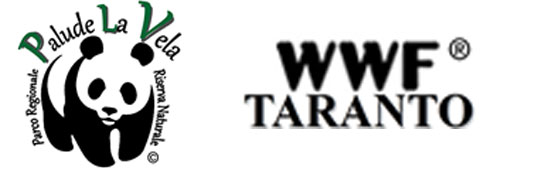 70. WWF - Taranto