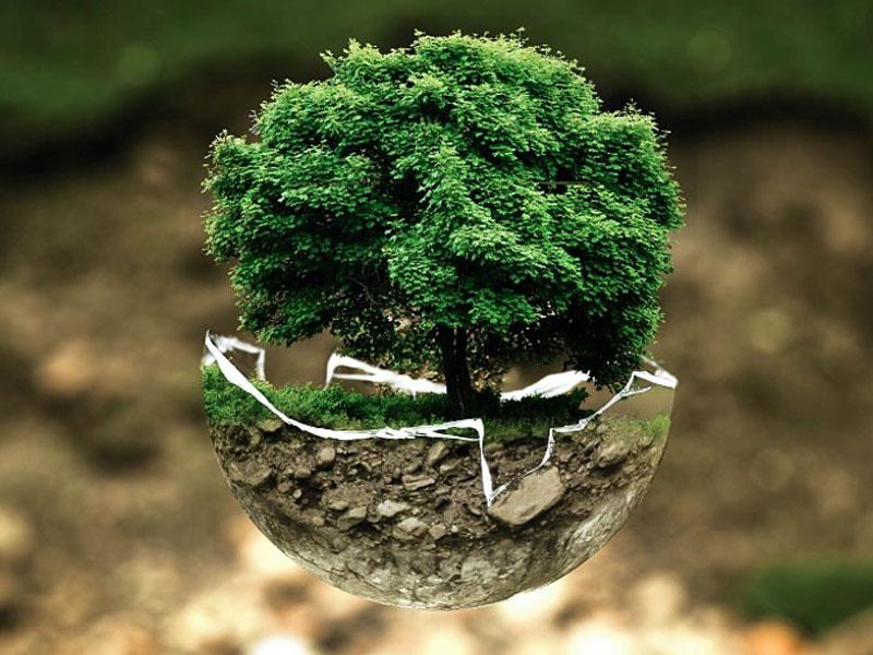 Eco-Prossimità: avere cura del territorio, valorizzare la bellezza